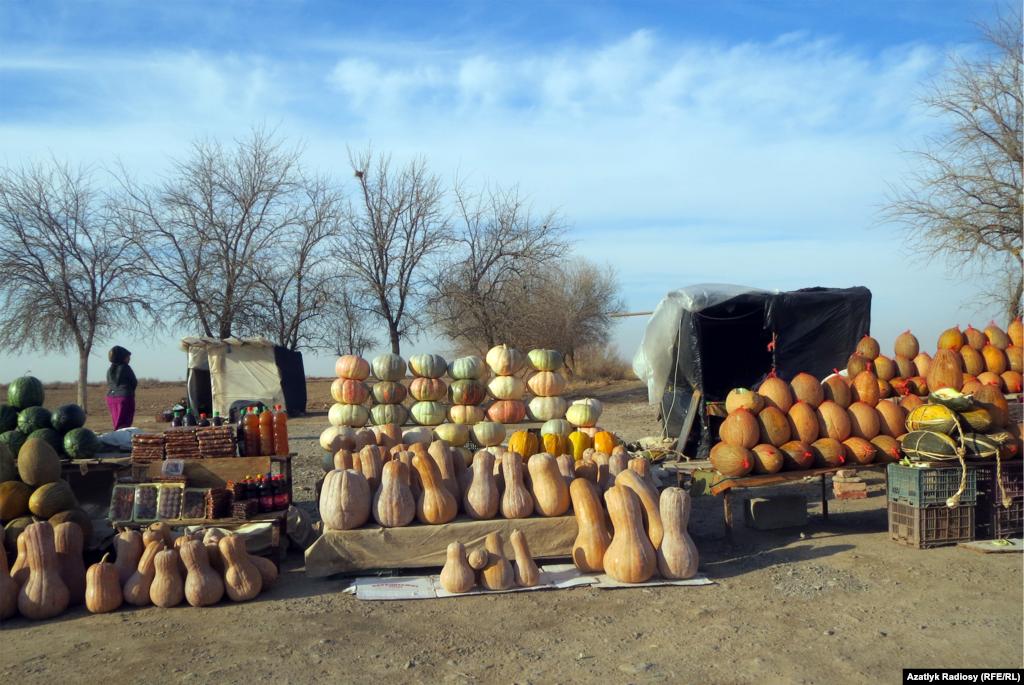 Aşgabat-Mary asfalt ýolunyň ugrunda tejenli daýhanlar bag-bakja önümlerini, şol sanda kädi, gawun, garpyz satýarlar.