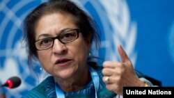 عاصمه جهانگیر، گزارشگر ویژه سازمان ملل در امور حقوق بشر در ایران