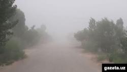 Соляно-песчанная буря пришла со стороны Каракалпакской Автономной Республики Узбекистана из приаральского региона.