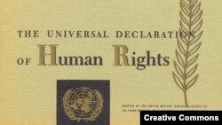 Beynəlxalq İnsan Hüquqları Bəyannaməsi