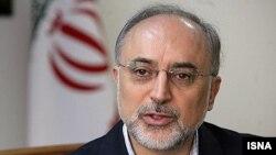 علی اکبر صالحی، رييس سازمان انرژی اتمی ايران
