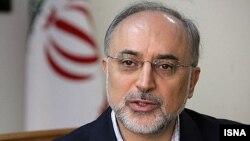 علی اکبر صالحی، وزیر امور خارجه ایران، میگوید که در ابتدا از شنیدن خبر هجوم به سفارت بریتانیا در تهران، آشفته شده است