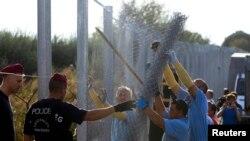Pamje nga ndërtimi i barrierës me tela gjemborë përgjatë kufirit të Hungarisë me Serbinë