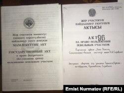 Акты университета от 2006 и 1990 годов.