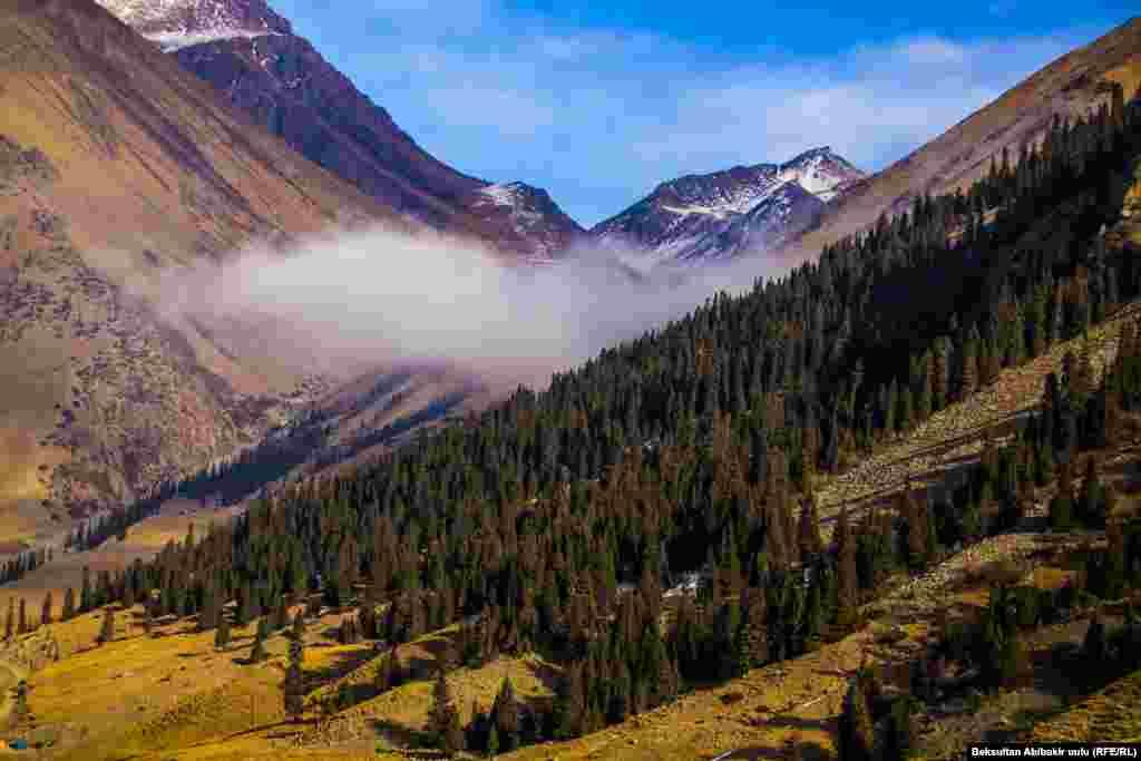Ак-Шыйрак. Иссык-Кульская область.