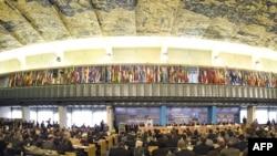 اجتماع في منظمة الفاو في روما