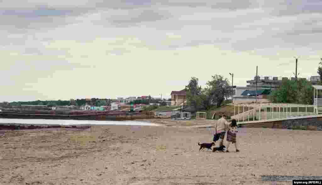 Ця молода пара з собачками скупалася в прохолодному морі до початку дощу
