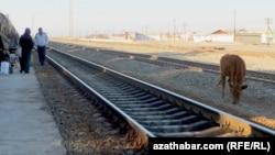 Поезда в Туркменистане не ездят с 16 июля этого года