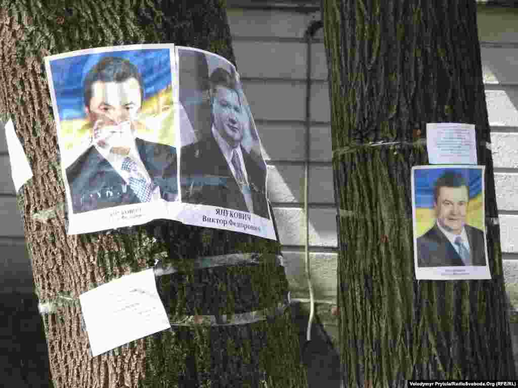 Вікторе Федоровичу, захисти дерева!