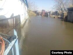 Подтопленный дом в селе Сарытобе, Карагандинской области. 17 апреля 2017 года. Фото прислали жители села.