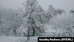 Yardımlı rayonu Ostayır kəndi, 20 aprel 2019