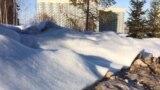 Покрытие из синтепона, имитирующее снег, на настоящем снеге. Красноярск, кампус Сибирского федерального университета, 21 февраля