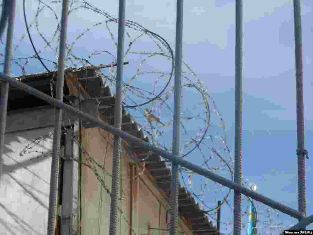 Птица на ограждении из колючей проволоки, возведенном по периметру тюрьмы.
