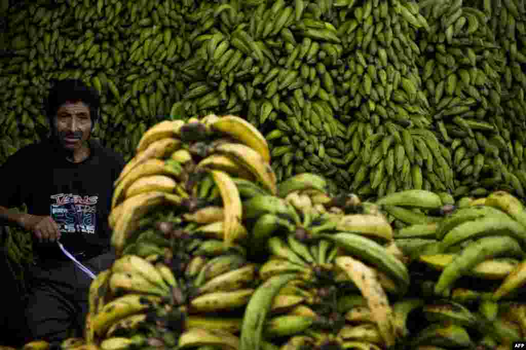 Перу – одна з небагатьох країн, що займається експортом бананів, тому й продають їх за кожним рогом будь-якого міста.  На фото – фруктовий ринок у Лімі, столиці Перу