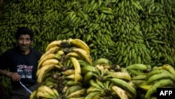 Торговля бананами на рынке в Перу