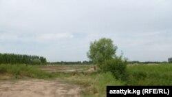 Жалаловго ок жаңылган кыргыз-өзбек чек арасын ушул аң гана бөлүп турат.