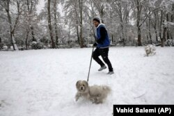 A man walks his dog in Laleh Park in central Tehran.