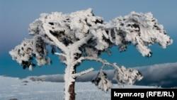 Заснеженный пик Крыма (фотогалерея)