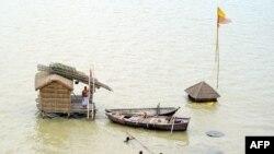 Hindistanda sel