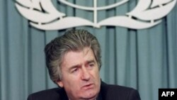Bosnian Serb leader Radovan Karadzic in 1993