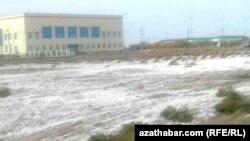 Из-за отсутствия дренажных коллекторов соляная почва на больших участках Дашогузской области - обычное явление