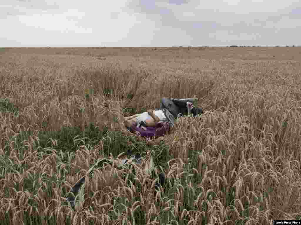French photographer Jerome Sessini won First Prize in the Spot News Category for this photo ​of the remains in a grain field in eastern Ukraine of a passenger from Malaysia Airlines Flight MH17, which was shot down over a region riven by fighting between pro-Russian rebels and the Ukrainian central government.
