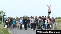Мигранты на австро-венгерской границе
