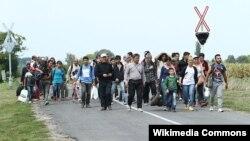 Փախստականներ Ավստրիայի և Հունգարիայի սահմանին, արխիվ