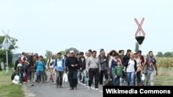 Мигранты на границе Австрии и Венгрии. Иллюстративное фото.