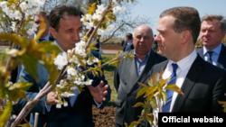 Дмитрий Медведев в Крыму инспектировал хранилище яблок