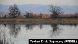 У пруда в селе Подгорное