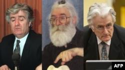 Sva lica Radovana Karadžića, od 1994. do 2016. godine