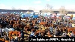 Кыргызстан. Скотный рынок. Иллюстративное фото.