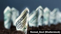 Amerikan dollary