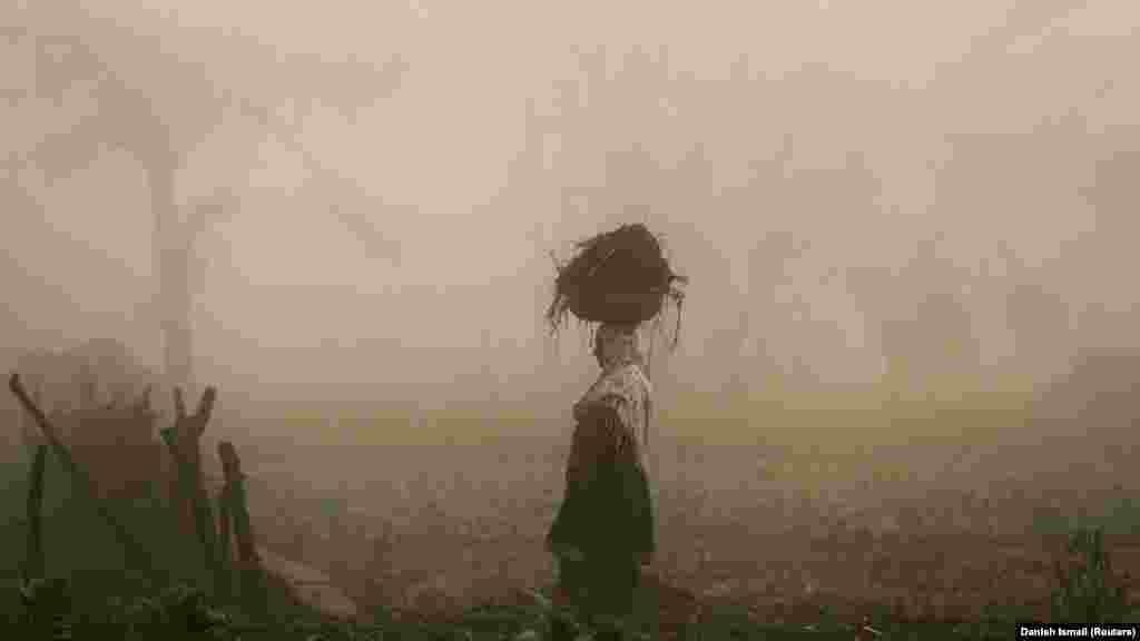 Жанчына на полі туманнай раніцай каля гораду Срынагар у Кашміры.