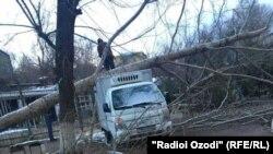 Последствия шквалистого ветра, обрушившегося на город Худжанд.