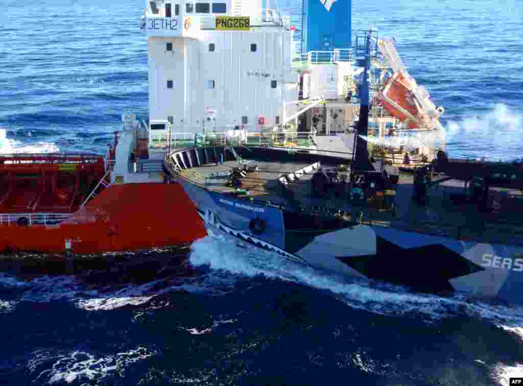"The Sea Shepherd ship ""Bob Barker"" (right) collides with a Japanese whaling fleet fuel tanker as Japanese whalers and militant conservationists clashed in icy waters off Antarctica. (AFP/Institute of Cetacean Research)"