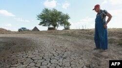 ABŞ-ın İllions ştatında fermer Marion Kujawa öz təsərrüfatını suvarmaq üçün istifadə etdiyi gölün qurumuş ərazisində məyus halda. 16 iyul 2012