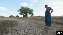 Farmer Marion Kujawa looks over a pond he usually uses to water the cattle on his farm in Ashley, Illinois. According to the Illinois Farm Bureau, the state is experiencing the sixth-driest year on record.