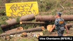 Акции протеста экологов в Химкинском лесу не остановили его вырубку