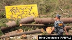 В очередной раз не добившись понимания в суде, экологи продолжат блокировать вырубку леса прямо на месте строительных работ