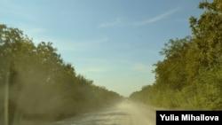 Drum de țară