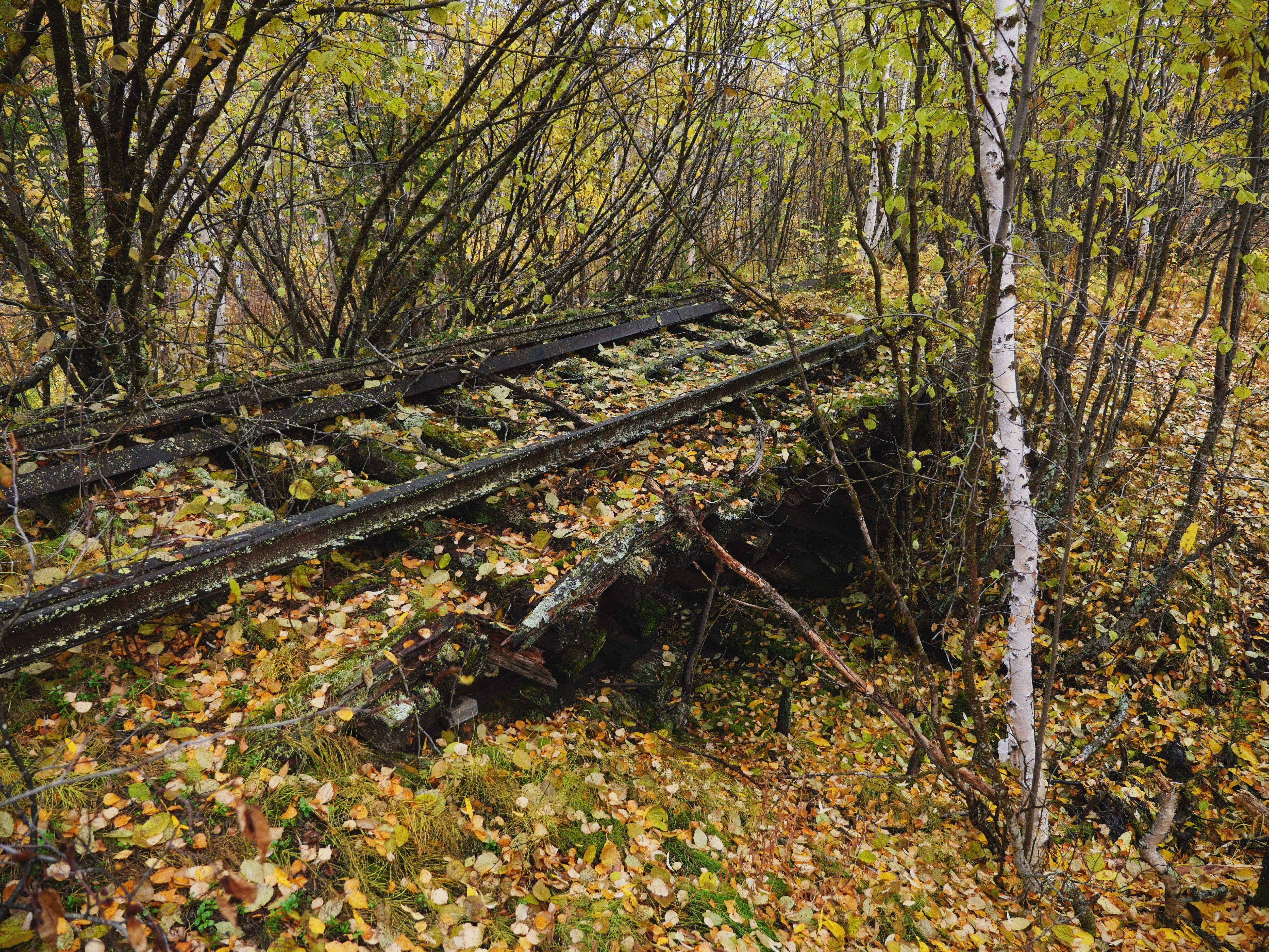 The Remains Of Stalins Dead Road