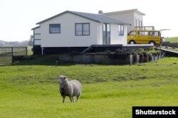 Виды Новой Зеландии