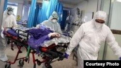 Речницю Міністерства охорони здоров'я Ірану Сіма Садат стверджує, що за попередню добу виявили 2 685 хворих на COVID-19