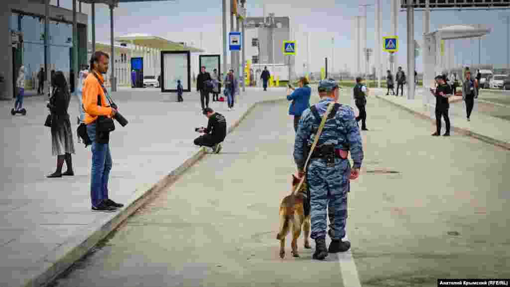 Немецкая овчарка в аэропорту – тоже на службе