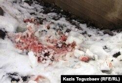 Следы крови возле дома погибшего Нурлана Утеулиева. Поселок Тастыбулак Карасайского района Алматинской области, 11 марта 2013 года.