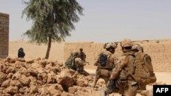 نیروهای افغان حین اجرای عملیات نظامی در ولایت هلمند. October 2, 2016