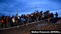 Беженцы на границе между Хорватией и Венгрией перед закрытием венгерской границы, 16 октября 2015 года