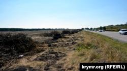 Лісосмуга, знищена під час будівництва траси «Таврида»